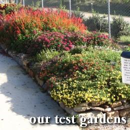 Test gardens